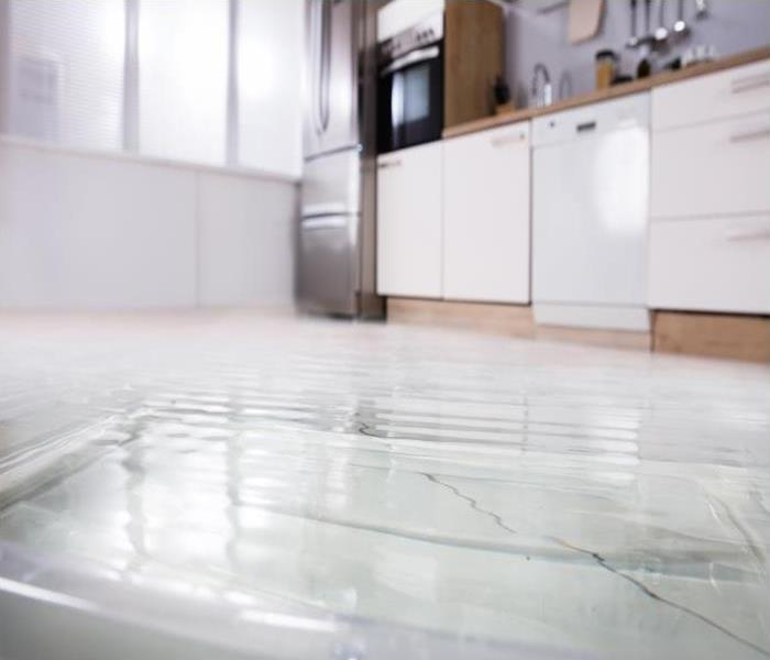 Water Damage Technicians Use Water Removal Strategies Before Other Work Can Begin In St. Petersburg