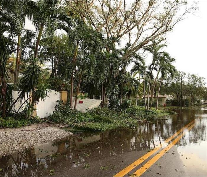 Storm Damage Hurricane Season Can Cause Flood Damage to Your St. Petersburg Home