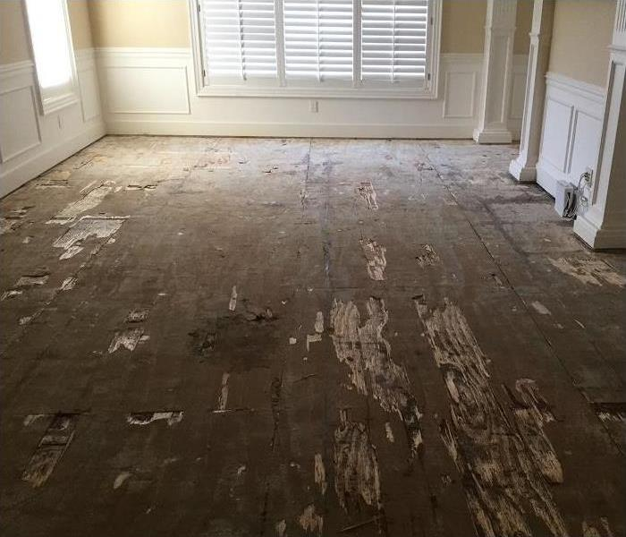 water damaged floor; flooring removed exposing subfloor