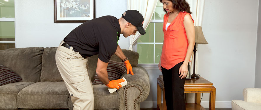 St. Petersburg, FL carpet upholstery cleaning