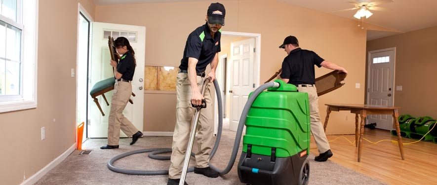St. Petersburg, FL cleaning services